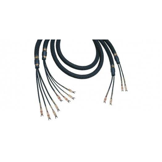 Kimber Kable Bifocal X (bi-câblage)